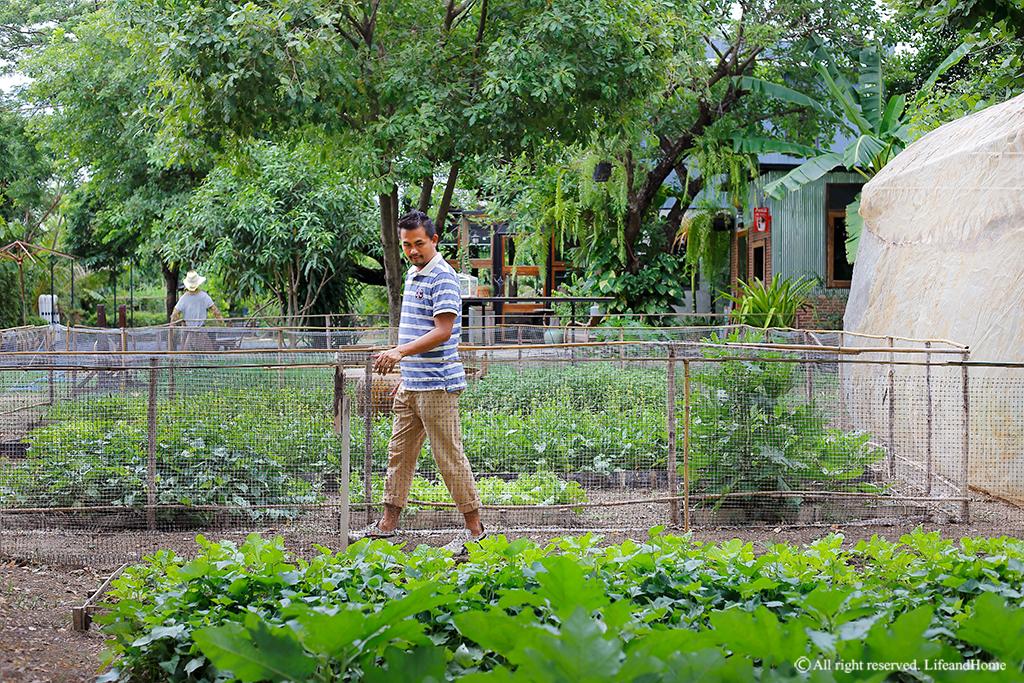 Eco farm HOUSE บ้านสวนเพียงพอในสวนพอเพียง