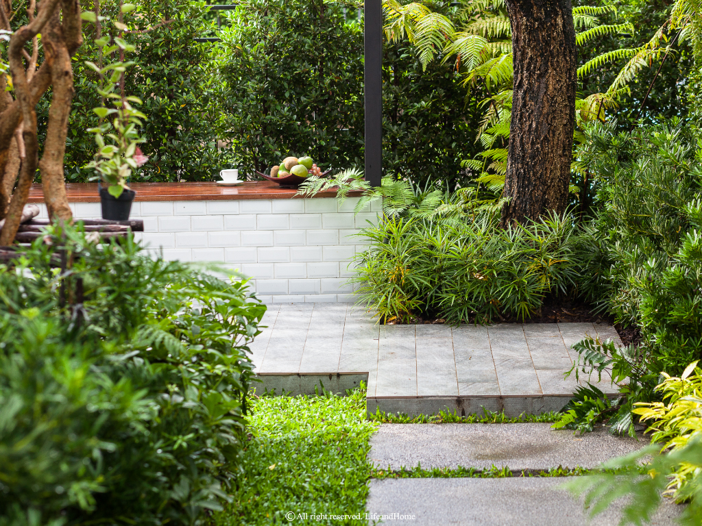 (Thailand) Modern Tropical Garden: รีโนเวทสวนมือสอง ให้ตอบโจทย์การใช้งานของครอบครัว